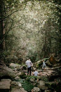 A family trek through the green forrest at Lennox Bridge